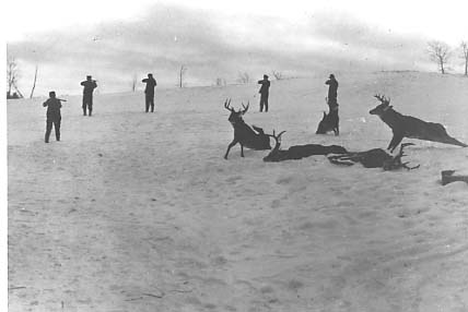vintage(40's-60's) deer camp pics - Michigan Whitetail Deer Hunting